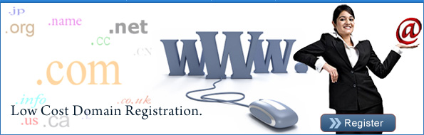 Web Hosting Company India